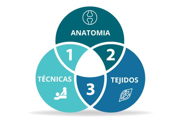Qué es la Osteopatía? - Escuela de Osteopatía de Madrid